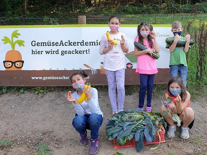Kinder ernten aus dem Schulgarten